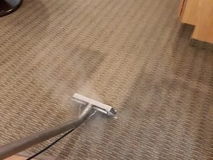 carpet cleaning services springfield il, carpet care springfield il, carpet repair springfield il